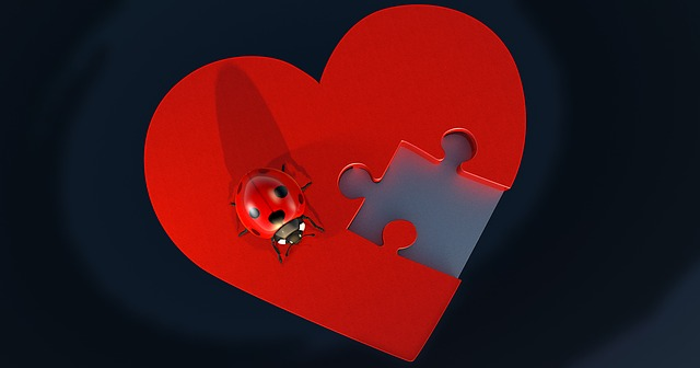 a heart with a missing puzzle piece and a lady bug sitting on top of the heart