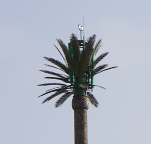 antenna array disguised by artificial palm tree